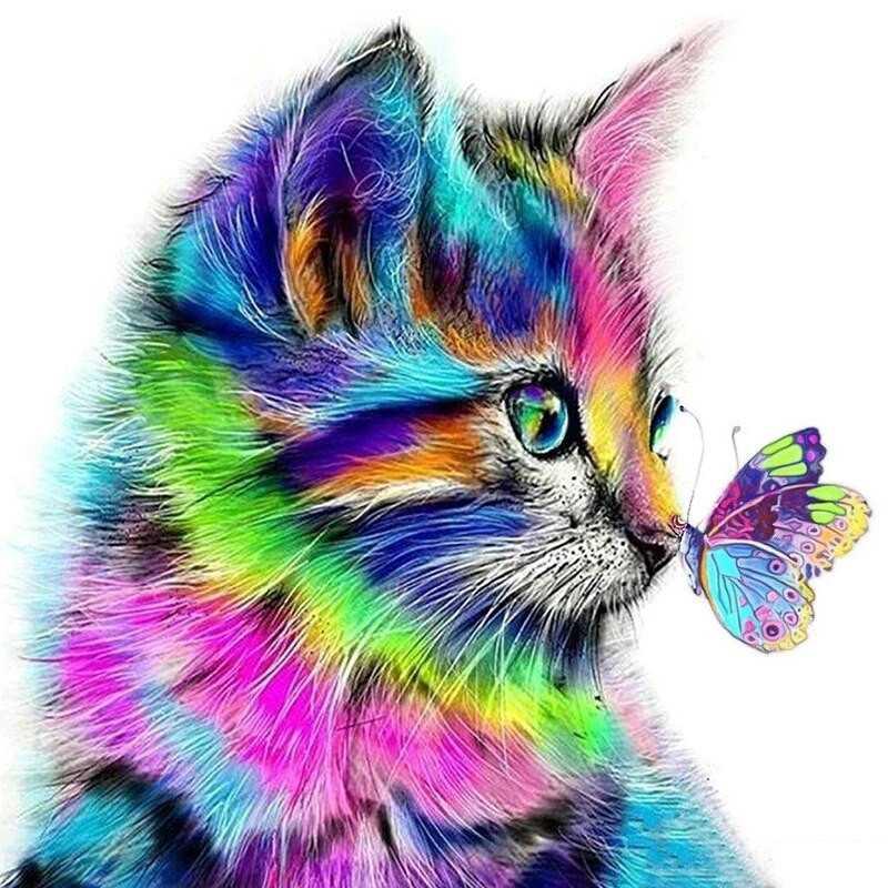Cats-Rainbow cat- From 15,19$